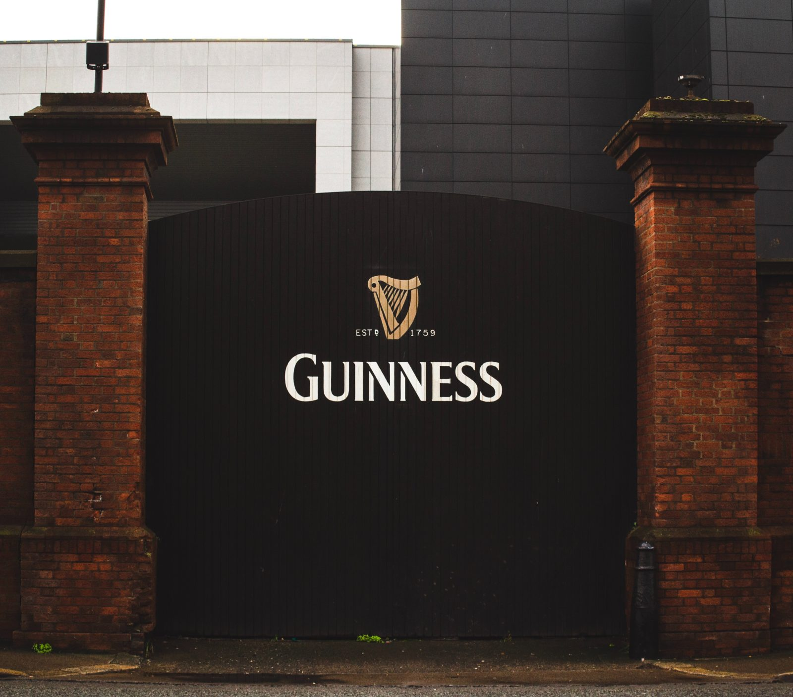 Southern CA Video Team Discuss The Guinness Beer Company
